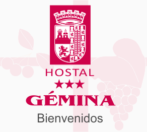 Hostal Gémina Barranco